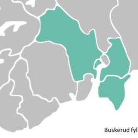 Regionreformen – Stor og sterk eller «Kolosser på leirføtter»